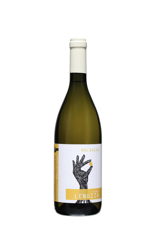 vini bianchi friulani