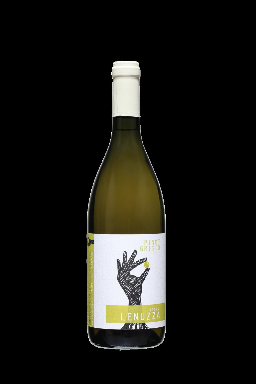 vini bianchi friulani pinot grigio